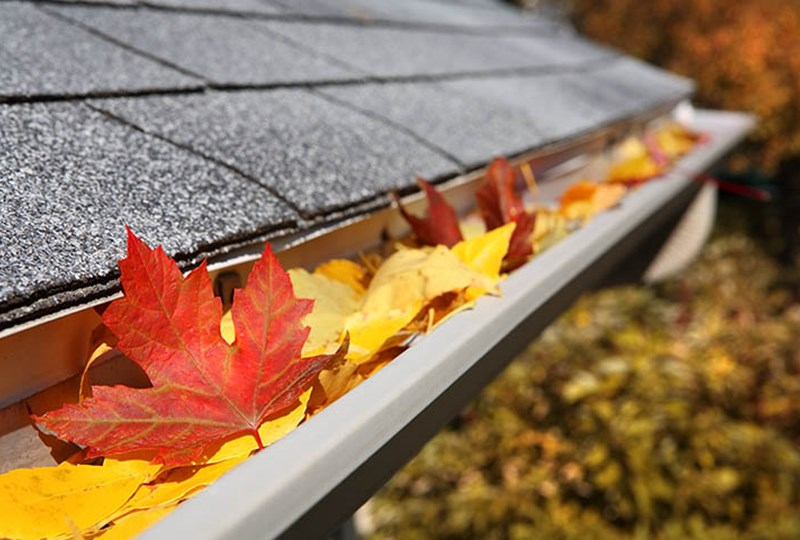 Fall gutter cleaning tips