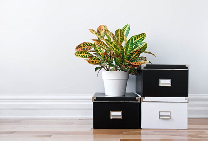 Increase home storage before selling