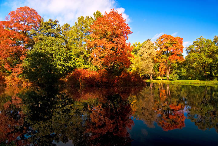 Take A Fall Colors River Cruise In Hudson Wisconsin