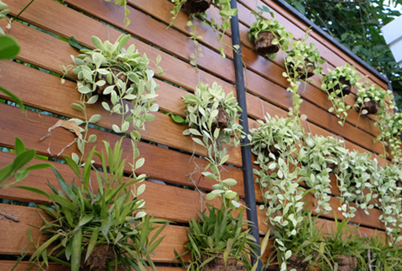 2019 landscaping trends every homeowner should know