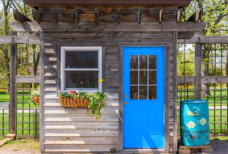 Chic shed with bright blue door