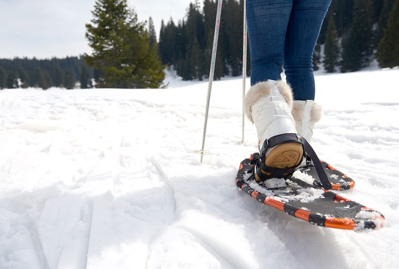 Top winter activities for adults in Minnesota and western Wisconsin